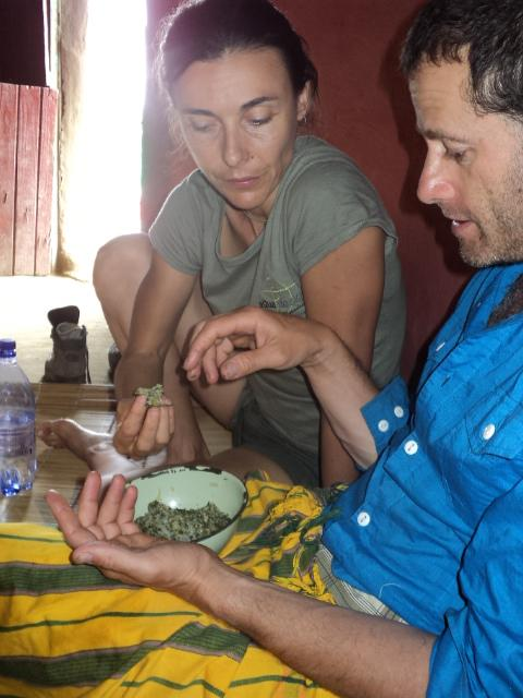 Sampling the fruits of their labour: pap with imifino
